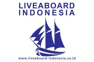 liveaboard-indonesia