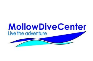 mollow-dive-center