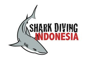 shark-diving-indonesia